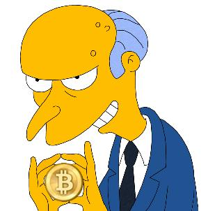 Burns bitcoin